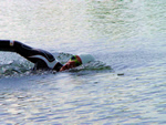 Piet Schram open water swimming